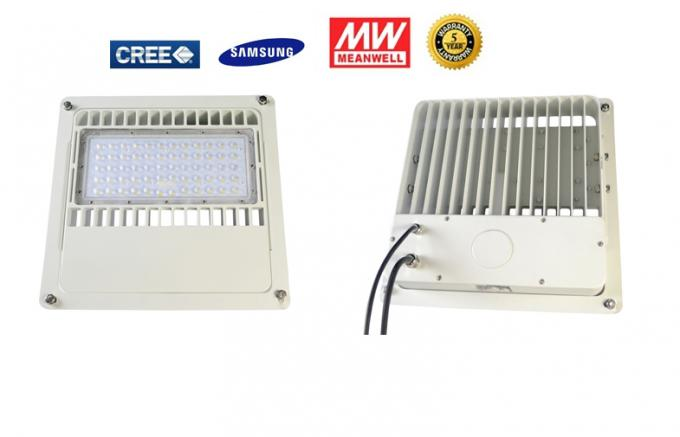 7600LM 80Watt LED Canopy Lights Meanwell Ra80 For Gas Station
