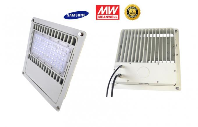 100LM/W IP67 100 Watt Led Canopy Lighting Anti-corrosion For Outdoor Canopy