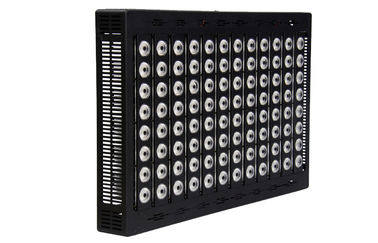 ประเทศจีน Waterproof High Power LED Flood Light 800 Watt For Stadium Lighting 150 LM Per Watt ผู้ผลิต
